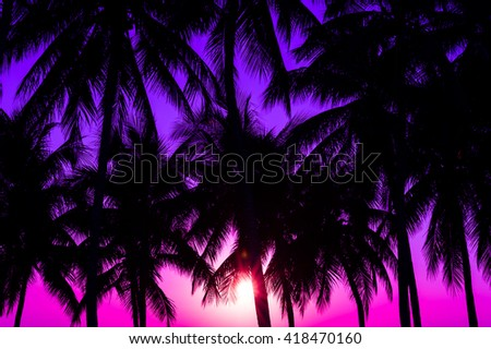 coconuts silhouettes with tropical sunset - stock photo