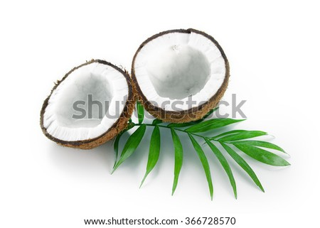 Coconuts with green palm leaf isolated on a white background. - stock photo