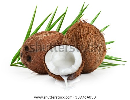 Coconuts with leaves on a white background.