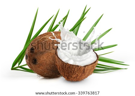 Coconuts with milk splash and leaf on white background.