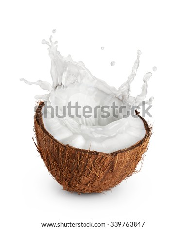Coconuts with milk splash on white background.
