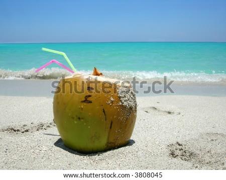 cocunut on a  beautiful Caribbean beach - stock photo