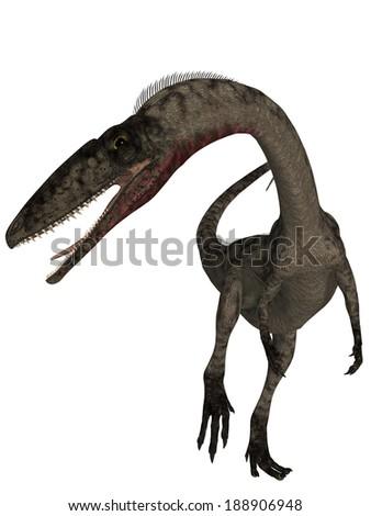 Coelophysis - 3D Dinosaur - stock photo