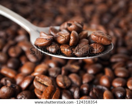 Coffe beans on a spoon - stock photo