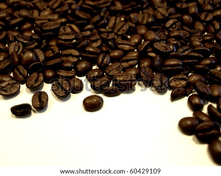 Coffe beans on white