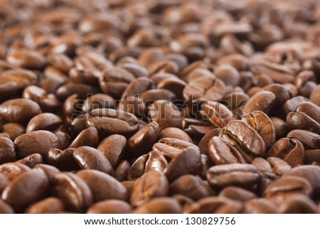 Coffee bean background with shallow depth of field