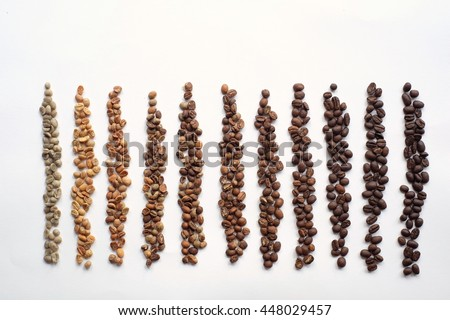 Coffee bean in various roasting level.