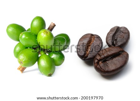 coffee beans and raw coffee Isolated on white background. - stock photo