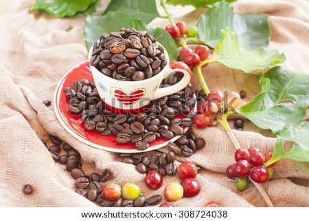 coffee beans and red ripe coffee on soft background - stock photo