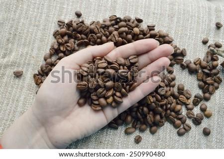 coffee beans, cinnamon sticks, star anise, closeup - stock photo
