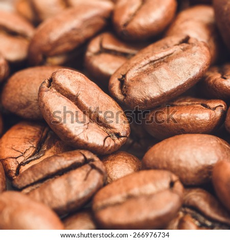 Coffee Beans Close-Up./ Coffee Beans. - stock photo