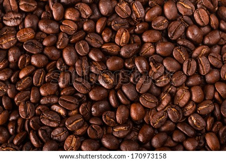 Coffee beans closeup - stock photo