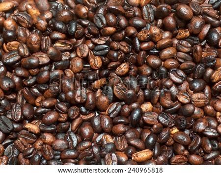 Coffee Beans Ethiopia / Coffee Beans / 2008 - stock photo