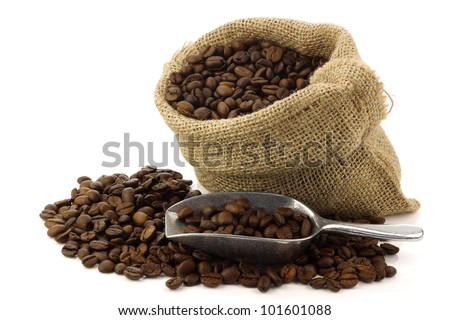 coffee beans in a burlap bag with an aluminum scoop on a white background - stock photo