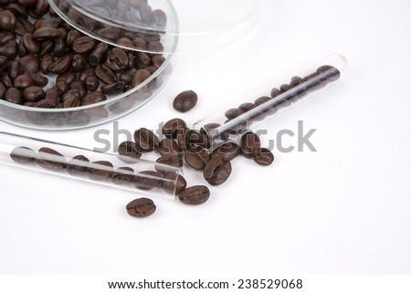 coffee beans in petri dish - stock photo