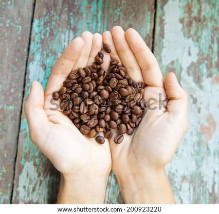 coffee beans in the hands - stock photo