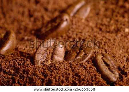 Coffee beans in the heap of the grounded coffe, macro close-up. - stock photo