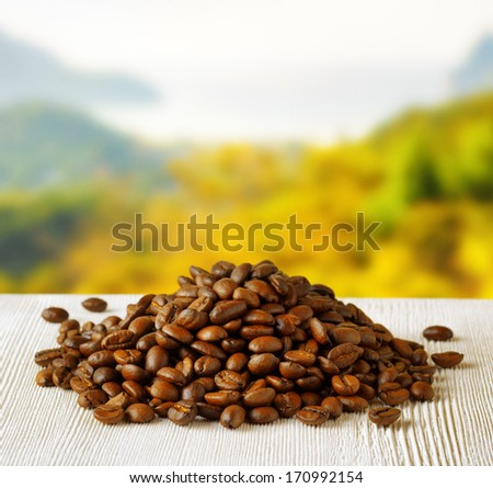 Coffee beans on highlands background. - stock photo