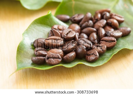 coffee beans on leaf of coffee - stock photo