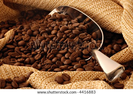 coffee beans spilling out of stainless steel scoop - stock photo