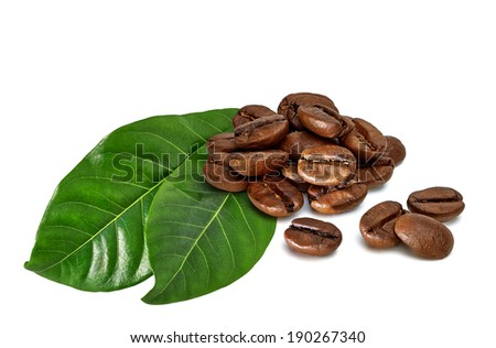 coffee beans with leaves on white background - stock photo