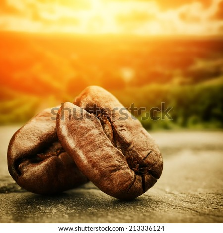 Coffee beans with sunset over plantation valley on background - stock photo