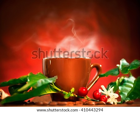 Coffee. Cup of steaming coffee with the real coffee ripe berries, flowers and leaves on a branch of coffee tree over red background - stock photo