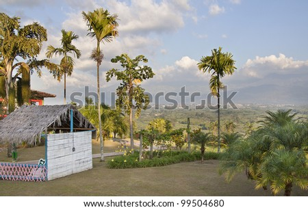 Coffee plantation in Colombia - stock photo