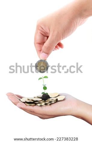 Coins - stock photo