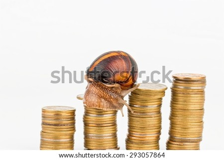 Coins and snail - Stock image macro.