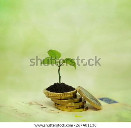 Coins and tree branch green background. Financial planning and investment concept. - stock photo