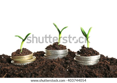 Coins in soil with young plant isolated on white