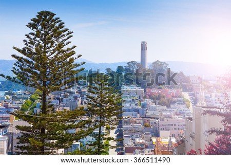 Coit Tower behind fir tree over the San Francisco - stock photo