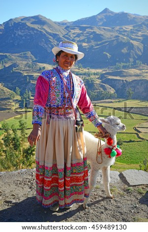 COLCA CANYON FRIDAY MARKET, PERU - JUNE 21 2013; A indigenous lady with her baby alpaca at the friday handicrafts market near the Colca Canyon in Peru.  - stock photo