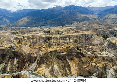 Colca Canyon, Peru, South America. The Incas built farming terraces with pond and cliff. One of the deepest canyons in the world. - stock photo