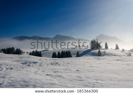 cold and frosty winter landscape with snowy hills and trees - stock photo