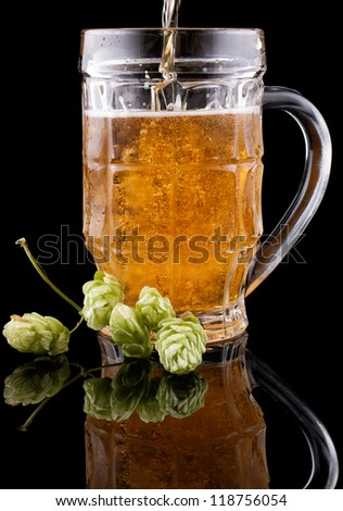 Cold beer is poured into a glass on a black background. Nearby lies hop.