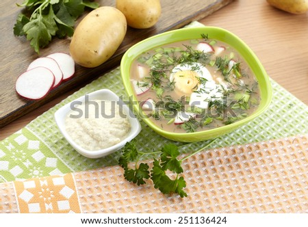 Cold kvass soup with dill and yolk, russian traditional dish - okroshka - stock photo
