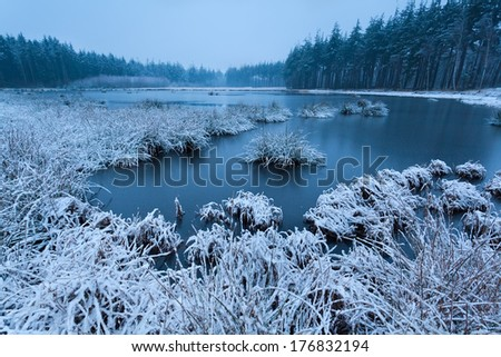 cold misty winter morning over wild lake - stock photo