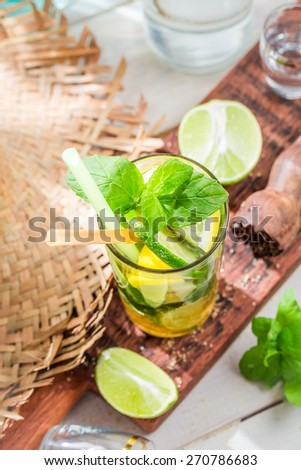 Cold mojito with citrus fruit