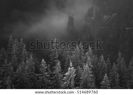 Cold sunrise over forest in mountains