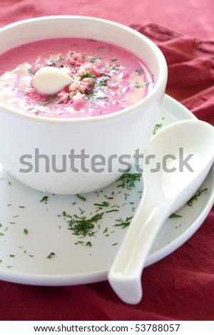 Cold vegetable soup with beet, cucumber, radish and egg - stock photo