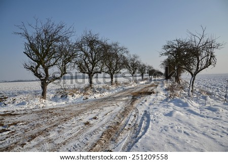 Cold weather - snowy country in a sunny winter day - stock photo