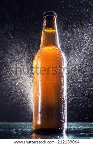 Cold wet bottle of beer  - stock photo
