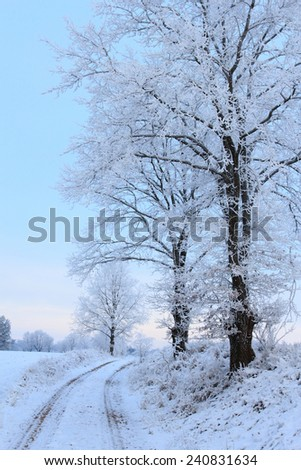 Cold winter landscape with frosty trees and country road - stock photo