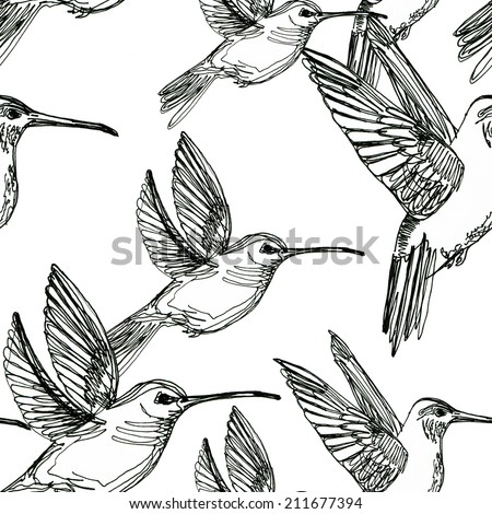 colibri drawing seamless background  made in line art style - stock photo