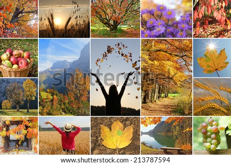 Collage - autumnal impressions. autumn landscape, trees and fruit. harvesting time. - stock photo
