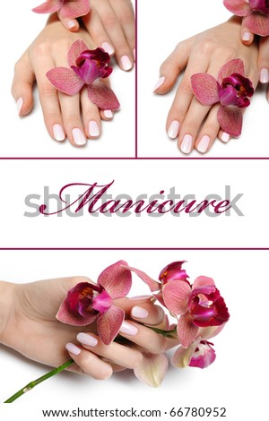 collage.Beautiful hand with perfect manicure and purple orchid flower group photo. isolated on white background