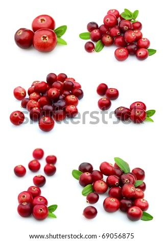 Collage from cranberry on a white background close up - stock photo