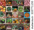 Collage from still lifes with vegetables. Vegetable background. Vegetables in a basket. Vegetables, top view.  A still life with vegetables. - stock photo